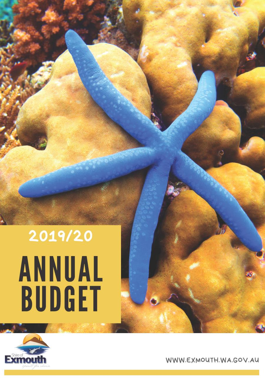 2019/20 budget adopted